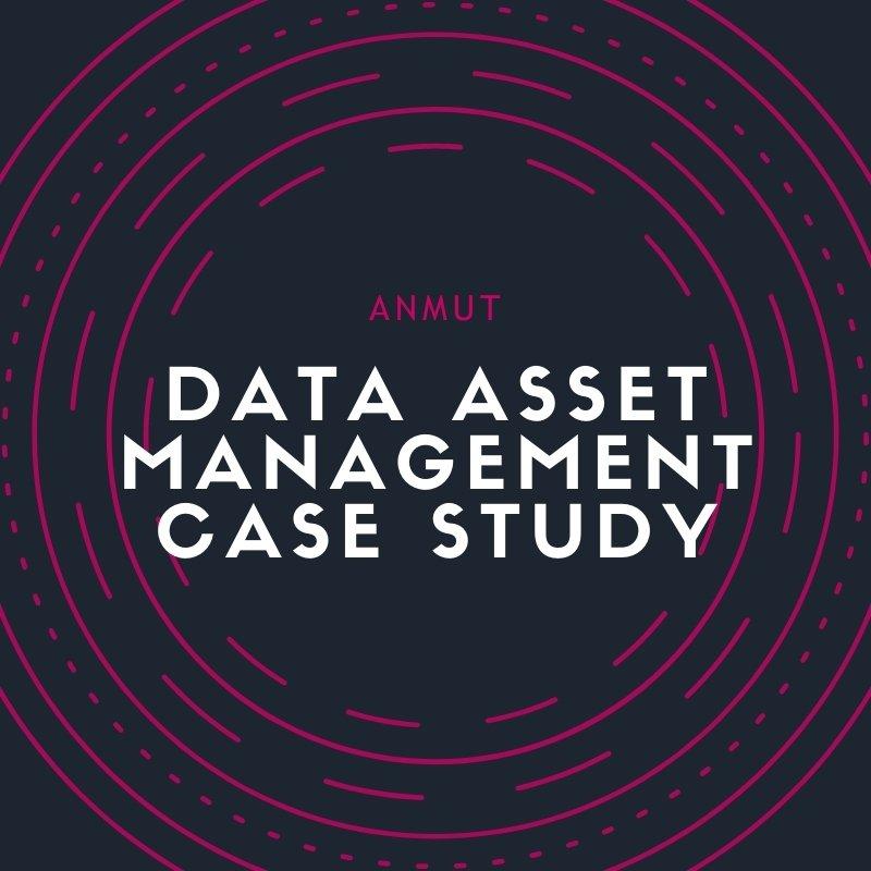 data asset management case study